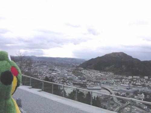 フロイエン山からベルゲンの山側
