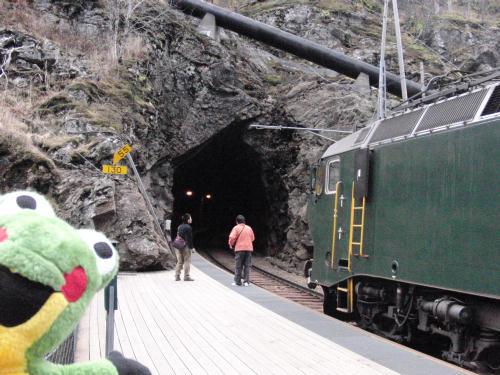 フロム鉄道のトンネル