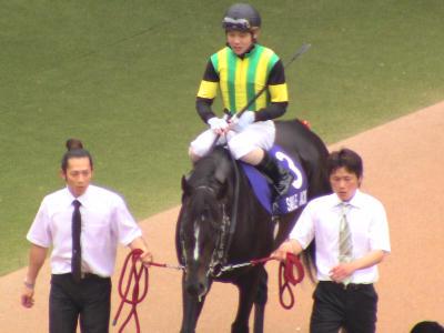 競馬回顧:2011年安田記念スマイルジャック