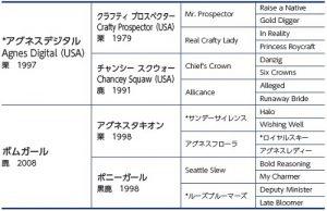 ボムガールの15血統表