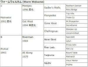 ウォームウェルカム血統表