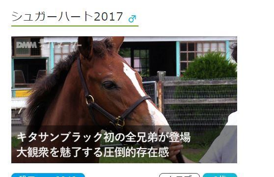 2017年度DMMバヌーシー募集馬検討メモ