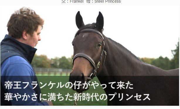 2018年DMMバヌーシー募集馬検討メモ-16年産馬編
