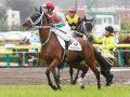 カエルレーシング各馬の近況19年8月-サバイバル3歳馬編