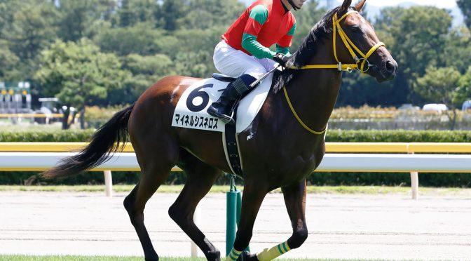 カエルレーシング各馬の近況19年8月-2歳馬1歳馬編